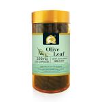 【NZ直邮】Gold Kiwi 金奇维 橄榄叶萃取精华软胶囊350MG 230粒